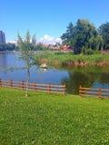 Парк Noua Стоковое Изображение RF