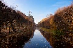 парк oliwa Стоковое Фото