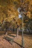 Парк Planty осени Стоковая Фотография