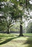 парк portland Орегона lauralhurst города Стоковое Фото
