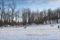Парк Qeens, Глазго на очень холодный день зим стоковые изображения rf