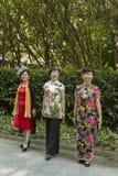 Парк ` s людей в Шанхае, Китае Стоковые Изображения RF