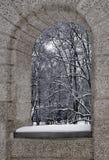 Парк Sapiegos в зиме, полдне Стоковая Фотография RF