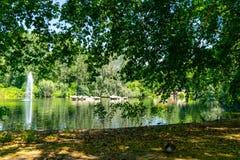 Парк St James в Лондоне, Великобритании стоковое фото rf