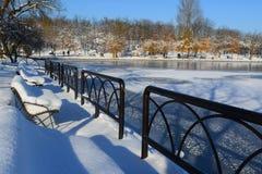 Парк Tineretului, Бухарест, Румыния, зимнее время Стоковые Изображения RF