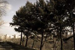 Парк Tineretului от Бухареста Румынии Стоковые Изображения