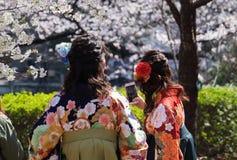 Парк Ueno Стоковые Изображения