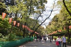 Парк Ueno Стоковое фото RF