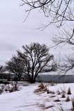Парк Williams форта, накидка Eiizabeth, Cumberland County, Мейн, Соединенные Штаты Новая стоковые фото