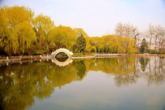 Парк Xiyuan, Лоян Стоковое фото RF