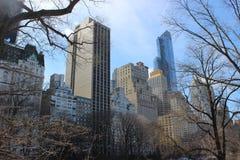 парк york главного города новый Стоковое Изображение RF