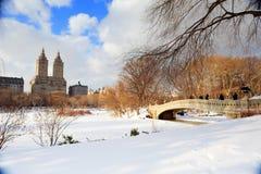 парк york панорамы manhattan главного города новый Стоковые Фото