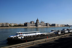 парламент венгра danube Стоковое Изображение