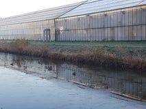Парники Westland Голландия Стоковые Фото
