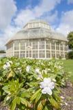 Парник в национальном ботаническом саде Стоковое фото RF