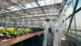Парник с яркими цветками и 2 химиками идя вдоль их сток-видео