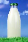 Парное молоко в бутылке на зеленом луге стоковые фото
