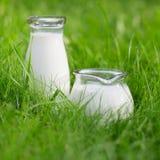 парное молоко Стоковые Изображения