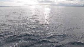 Паром двигая в море акции видеоматериалы