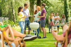Партия барбекю лета в природе стоковая фотография rf
