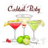 Партия коктеиля коктеиля Unforgettables установленная Стоковое Изображение
