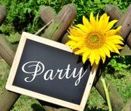 Партия экрана панели солнцецвета Стоковое Фото