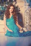 Партия Christmans, женщина зимних отдыхов с котом Новый Год девушки стоковые фото