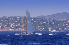 Парусники в St Tropez стоковые изображения