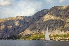Парусники плавают вдоль берега залива Kotor Черногория Стоковое фото RF