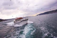 Парусное судно в bosphorus Стоковые Изображения