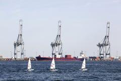 Парусные судна лазера радиальные в гавани Орхуса, Дании стоковое изображение rf