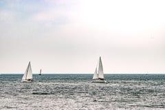 Парусные судна на море корабль высокорослый Плавающ на яхте и плавающ перемещение Стоковая Фотография