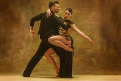 Пары бального зала танца в золоте одевают танцы на предпосылке студии стоковое изображение rf