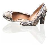 Пары ботинок женщин кожи змейки над белизной Стоковое Изображение RF