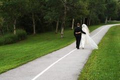 Пары венчания Стоковые Изображения RF