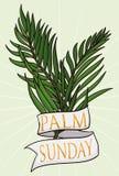 Пары ветвей с лентой для ладони воскресенья, иллюстрации вектора Стоковое Изображение
