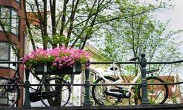 Пары велосипедов на мосте в Амстердаме Стоковое Изображение