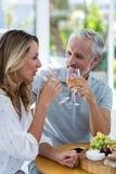 пары выпивая возмужалое вино Стоковые Изображения RF