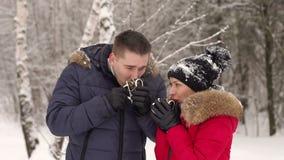 Пары в влюбленности выпивая горячий чай в парке зимы видеоматериал