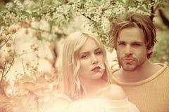 Пары в влюбленности в blossoming цветке Чувственная женщина и человек в цветени вишни Стоковая Фотография