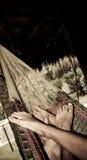 Пары в гамаке Стоковая Фотография