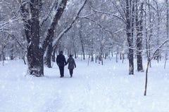 Пары в лесе зимы Стоковое Изображение