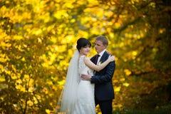 Пары в национальных костюмах на предпосылке зеленеют парк Стоковое Изображение RF