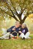 Пары в парке осени Стоковая Фотография RF