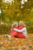 Пары в парке осени Стоковые Фото