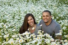 Пары в поле маргаритки Стоковая Фотография