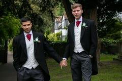 Пары гомосексуалиста grooms представляют для фотоснимок после их свадебной церемонии Стоковые Фотографии RF