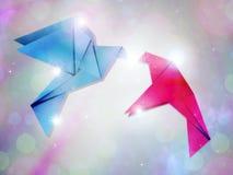 Пары голубей Стоковая Фотография