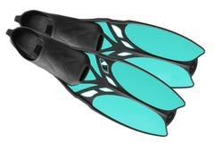 Пары голубых ребер Стоковые Изображения RF