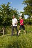 пары делая счастливый возмужалый нордический старший гулять Стоковое Фото